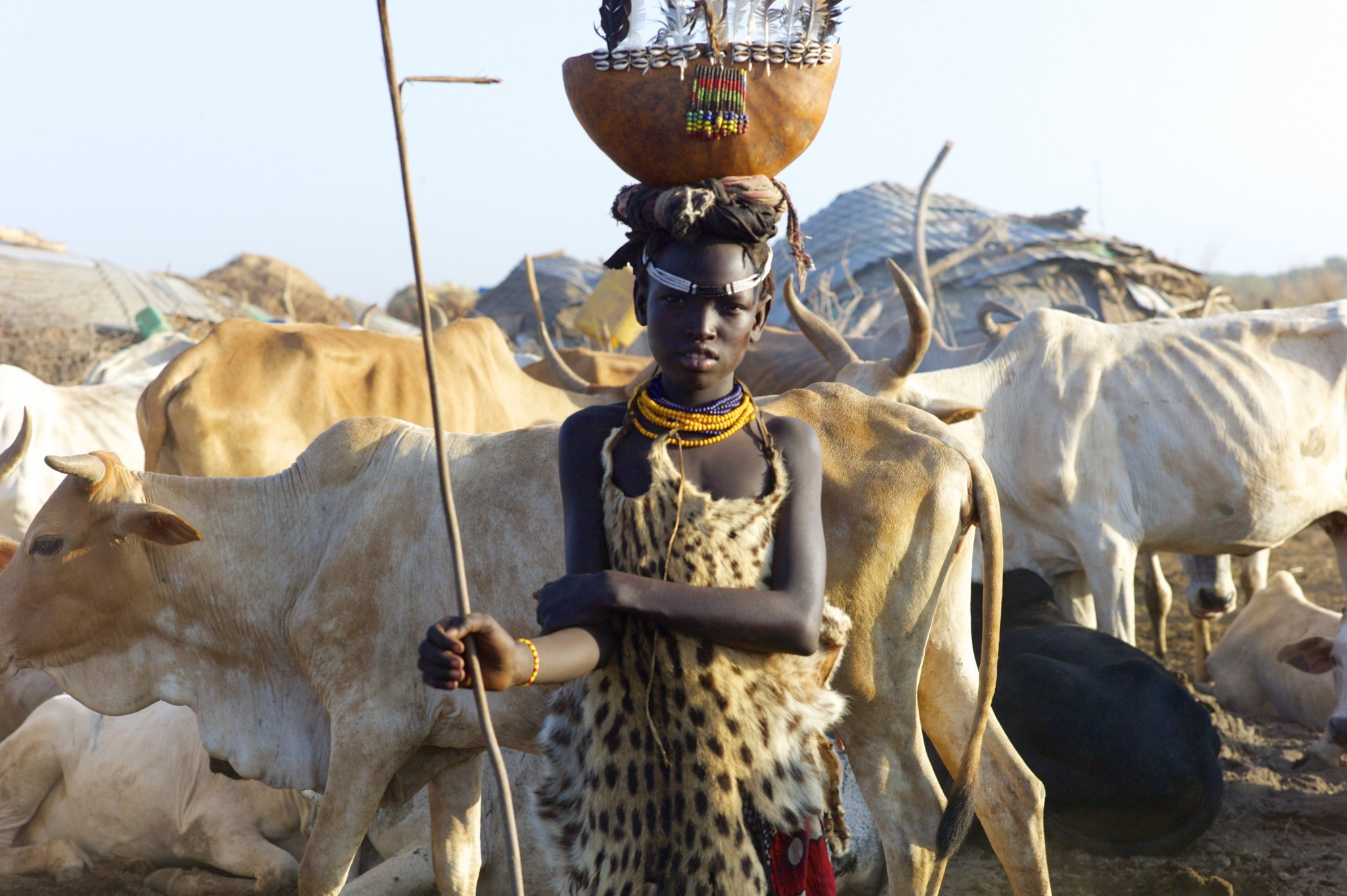 young girl with cattle Dassanech tribe
